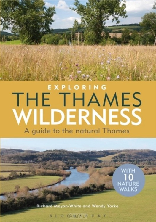 Exploring the Thames Wilderness 2013